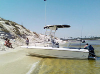 1995 Sunbird Neptune 18' with SG300