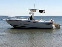 2000 Striper Seaswirl  with SG300