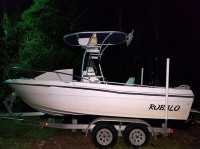 1994 Robalo 1820cc with SG300 T-Top