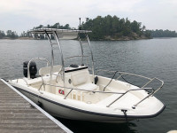 2011 Boston Whaler Dauntless 18' with SG300