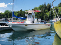 1996 Boston Whaler Outrage 19 with SG300 T-Top