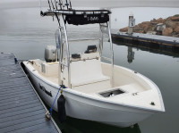 1999 Cape Horn 17cc with SG300 T-Top