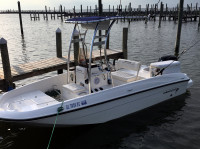 2019 Bayliner Element 18 with SG300 T-Top