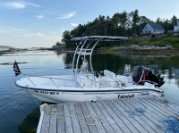 2001 Boston Whaler 16' Dauntless  with SG300 T-Top